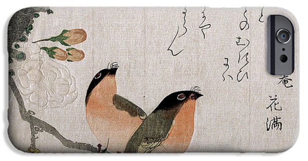 Cherry Blossoms Drawings iPhone Cases - Bullfinches and Cherry Blossoms iPhone Case by Kubo Shunman