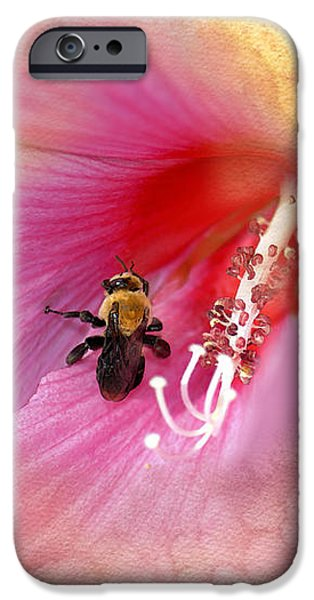 Bumble Bee Bliss iPhone Case by Betty LaRue
