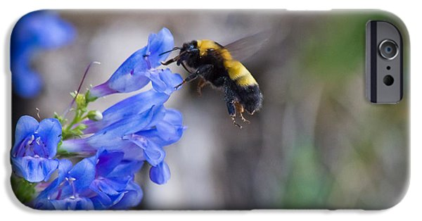 July iPhone Cases - Bumble Blue - Casper Mountain - Casper Wyoming iPhone Case by Diane Mintle