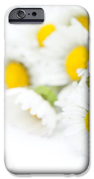 Bunch of Daisies iPhone Case by Anne Gilbert