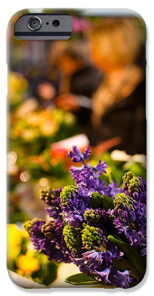 Sunlight On Flowers iPhone Cases - Bunch Of Flowers At A Flower Shop, Rue iPhone Case by Panoramic Images