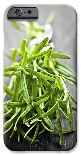 Cutting iPhone Cases - Bunch of fresh rosemary iPhone Case by Elena Elisseeva