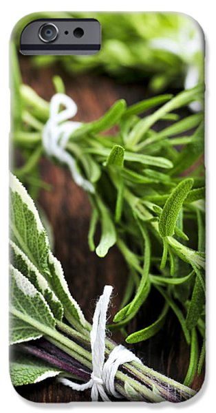 Thread iPhone Cases - Bunches of fresh herbs iPhone Case by Elena Elisseeva