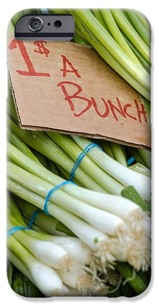 Locally Grown iPhone Cases - Bunches of Onions iPhone Case by Teri Virbickis