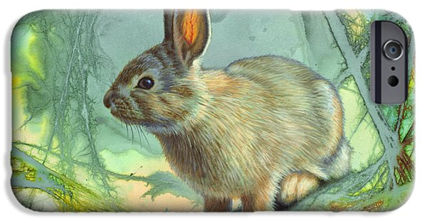 Tails iPhone Cases - Bunny in Abstract iPhone Case by Paul Krapf
