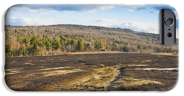 Blueberries iPhone Cases - Burnt Blueberry Field In Maine iPhone Case by Keith Webber Jr