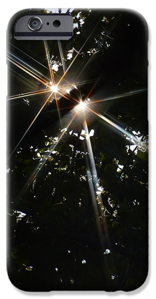 Stargazing iPhone Cases - Bursting Through Trees iPhone Case by Donna Blackhall