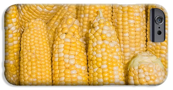 Sweet Corn Farm iPhone Cases - Bushel of Pealed Corn  iPhone Case by James BO  Insogna