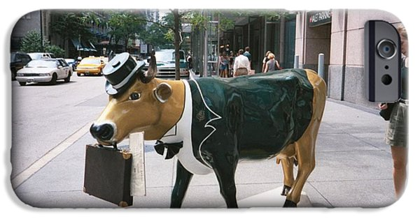 Chicago iPhone Cases - Business Cow? iPhone Case by Jennifer Fliegel