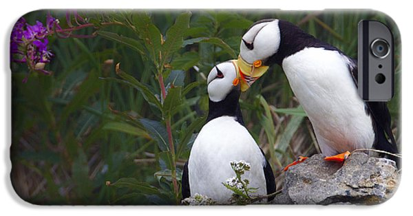 Best Sellers -  - Bonding iPhone Cases - Bussin Puffins iPhone Case by Sharon Ely