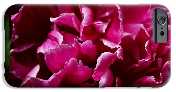 Fuchsia iPhone Cases - But for a Moment iPhone Case by Rona Black