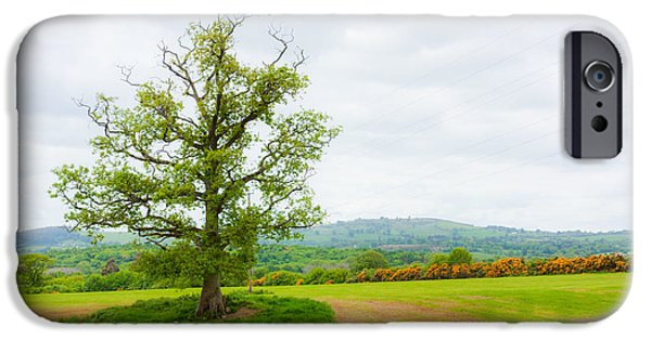 Nature Scene iPhone Cases - But Only God Can Make a Tree iPhone Case by Semmick Photo