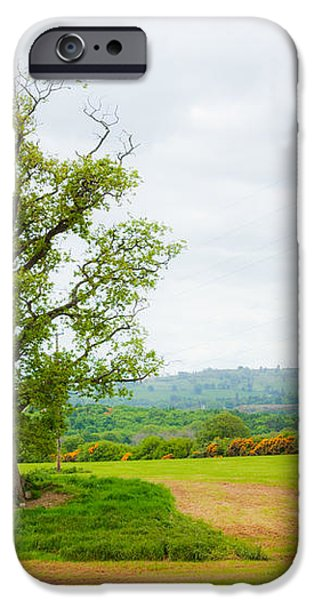 But Only God Can Make a Tree iPhone Case by Semmick Photo
