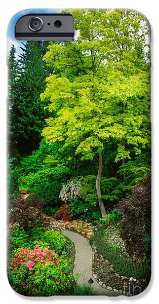 Pathway iPhone Cases - Butchart Gardens Pathway iPhone Case by Inge Johnsson