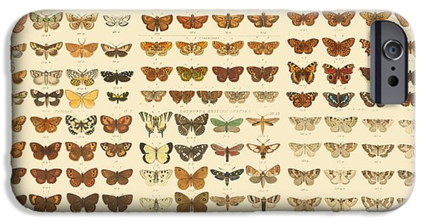 Antiques iPhone Cases - Butterflies iPhone Case by Gary Grayson