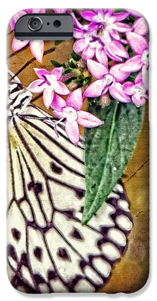 Butterfly Art - Hanging On - By Sharon Cummings iPhone Case by Sharon Cummings