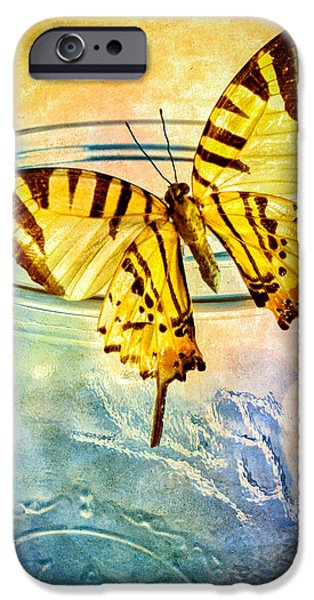 Freedom iPhone Cases - Butterfly Blue Glass Jar iPhone Case by Bob Orsillo