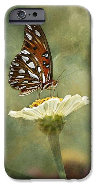 Butterfly Dreams iPhone Case by Kim Hojnacki