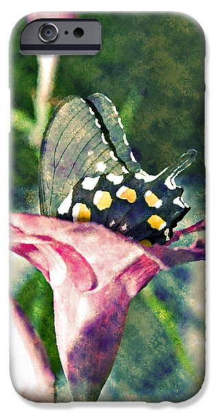 Susan Leggett iPhone Cases - Butterfly in Flower iPhone Case by Susan Leggett
