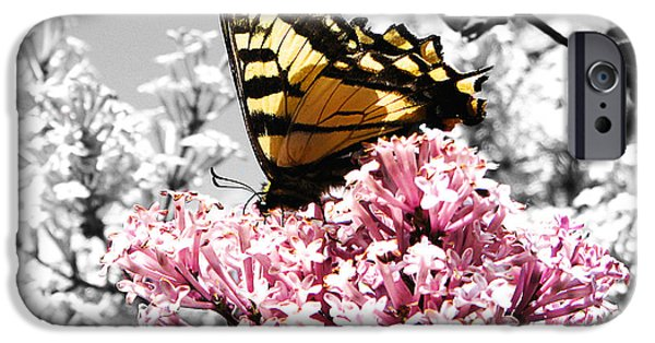 Flower Still Life Mixed Media iPhone Cases - Butterfly on Lilac iPhone Case by Mellisa Ward