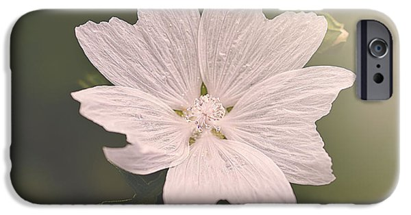 Faith Simbeck iPhone Cases - Butterfly Petals iPhone Case by Faith Simbeck