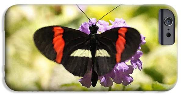 Admiral Digital iPhone Cases - Butterfly Series III iPhone Case by Suzanne Gaff