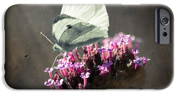 Wild Animals iPhone Cases - Butterfly Spirit #02 iPhone Case by Loriental Photography