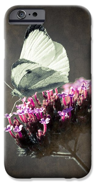 Butterfly Spirit #02 iPhone Case by Loriental Photography