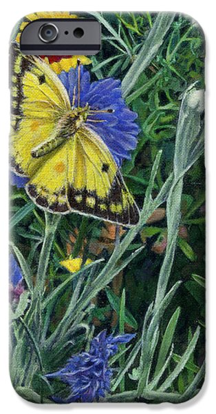 Butterfly Wildflowers spring time garden floral oil painting green yellow iPhone Case by Walt Curlee