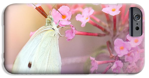 Cabbage White Butterfly iPhone Cases - Butterrfly Joy iPhone Case by Betty LaRue