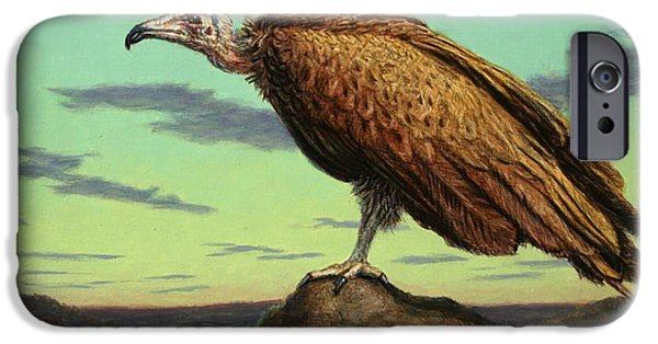 Vulture iPhone Cases - Buzzard Rock iPhone Case by James W Johnson