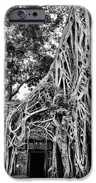 Tree Roots iPhone Cases - BW Roots Ta Prohm iPhone Case by Chuck Kuhn