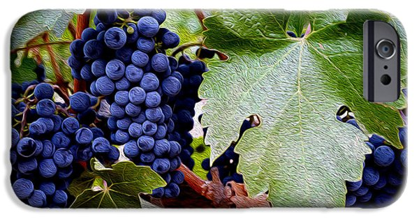Wine Bottle iPhone Cases - Cabernet Grapes iPhone Case by Jon Neidert
