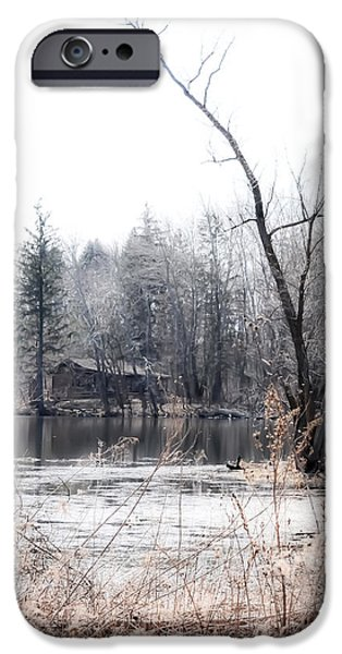 Cabin in the Woods iPhone Case by Julie Palencia