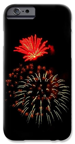 4th July iPhone Cases - Firework Cactus Flower   iPhone Case by Adrienne Wilson