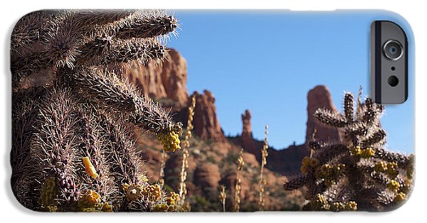 Cactus Southwest Cactus Flower Orange Wildflowers Nature Arizona iPhone Cases - Cactus Guardians at Sedona iPhone Case by Lee Craig