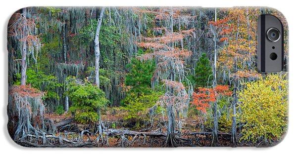 Caddo Lake iPhone Cases - Caddo Lake Fall Foliage iPhone Case by Inge Johnsson
