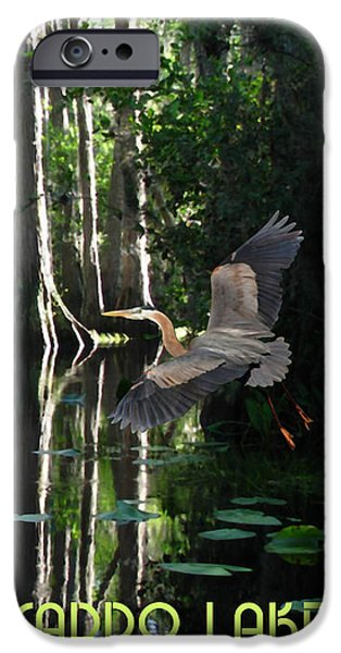 Caddo Lake iPhone Cases - Caddo Lake State Park iPhone Case by Jim Sanders