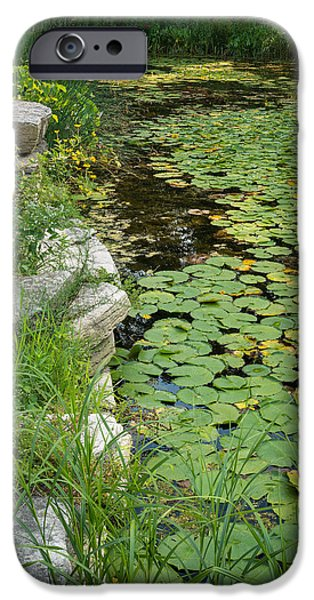 Lincoln iPhone Cases - Caldwell Lily Pond Chicago IL Number 2 iPhone Case by Steve Gadomski