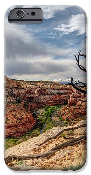 Calf Creek iPhone Case by Dustin  LeFevre