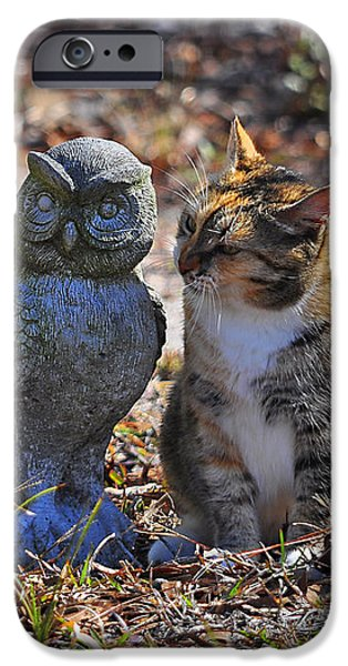 Calico Cat and Obtuse Owl iPhone Case by Al Powell Photography USA