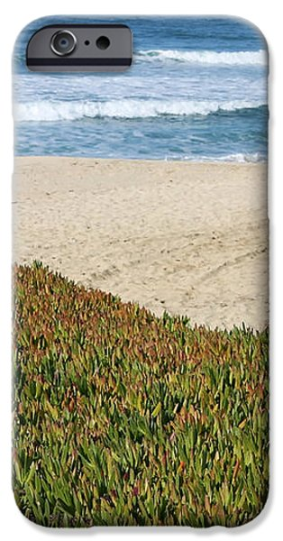 California Beach with Ice Plant iPhone Case by Carol Groenen