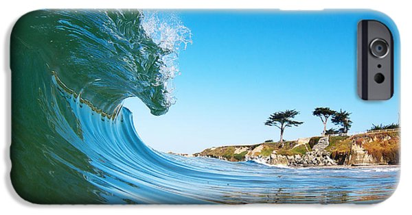 Recently Sold -  - Santa iPhone Cases - California Curl iPhone Case by Paul Topp