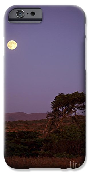 Bodega Bay iPhone Cases - California Moon iPhone Case by Diane Diederich