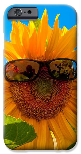 California Sunflower iPhone Case by Bill Gallagher
