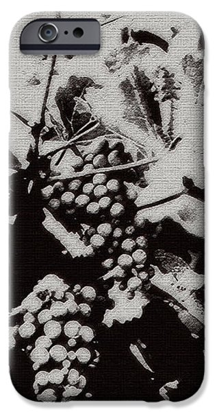 California Vineyard iPhone Case by Linda Knorr Shafer