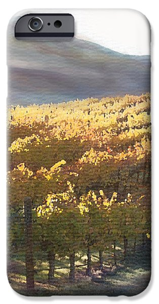 California Vineyard Series Vineyard in the Mist iPhone Case by Artist and Photographer Laura Wrede