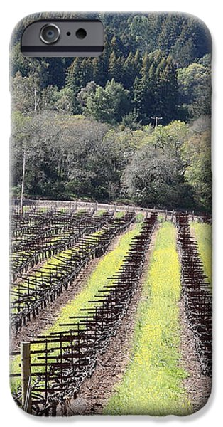 California Vineyards In Late Winter Just Before The Bloom 5D22051 iPhone Case by Wingsdomain Art and Photography