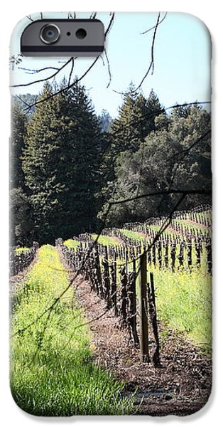 California Vineyards In Late Winter Just Before The Bloom 5D22053 iPhone Case by Wingsdomain Art and Photography