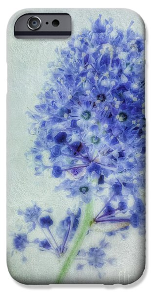Nectar iPhone Cases - Californian blue iPhone Case by John Edwards